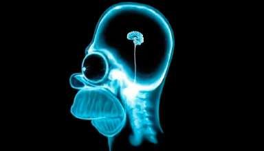 Продукты полезные для головного мозга и нервной системы