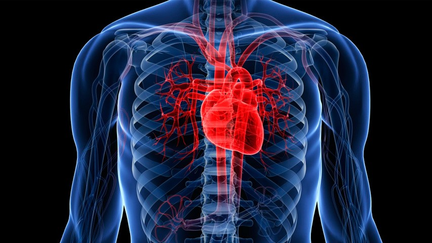 Какие продукты полезны после инфаркта