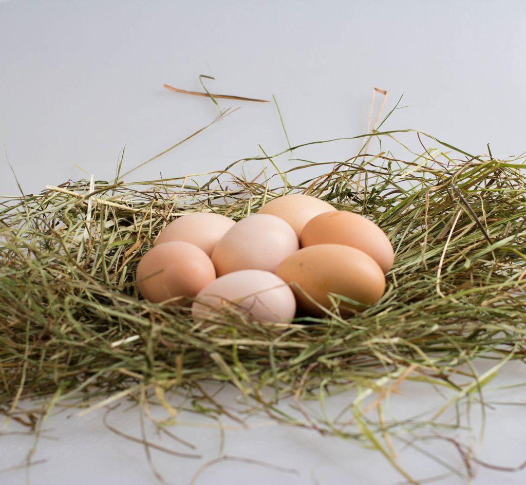 Калорийность вареного яичного белка и его полезные свойства