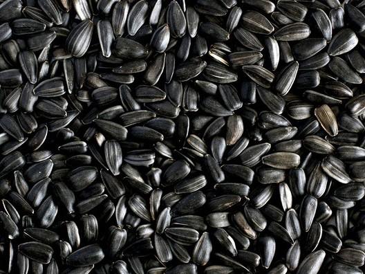 какие травы снижают холестерин и чистят сосуды