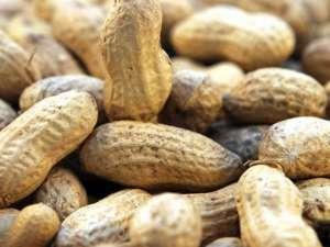 Сыроедение и орехи