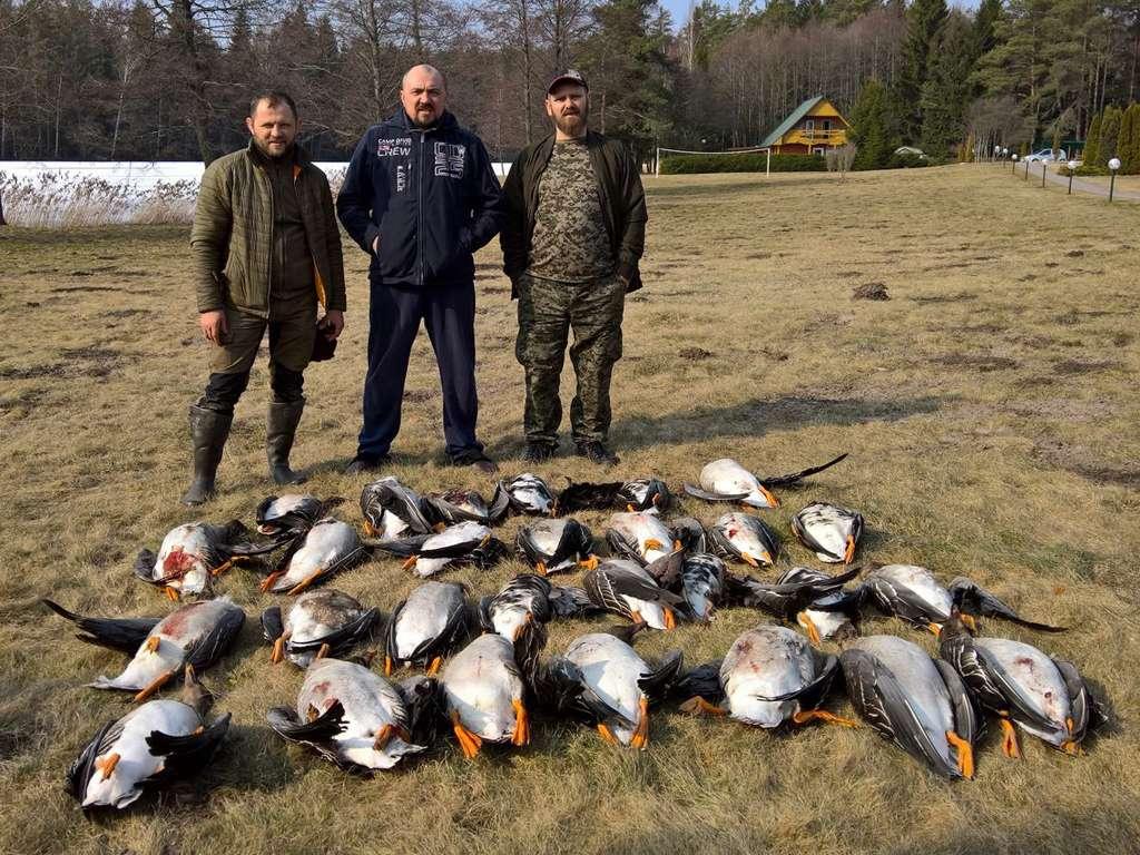 Охота на гуся в Беларуси 2018